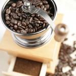 Kávéfajták