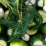 Kovászos uborka recept